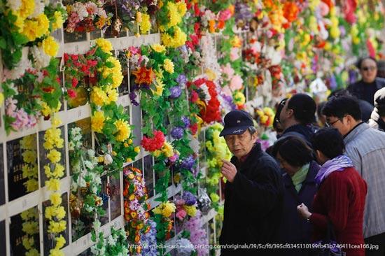 Festival de Qingming – 清明节